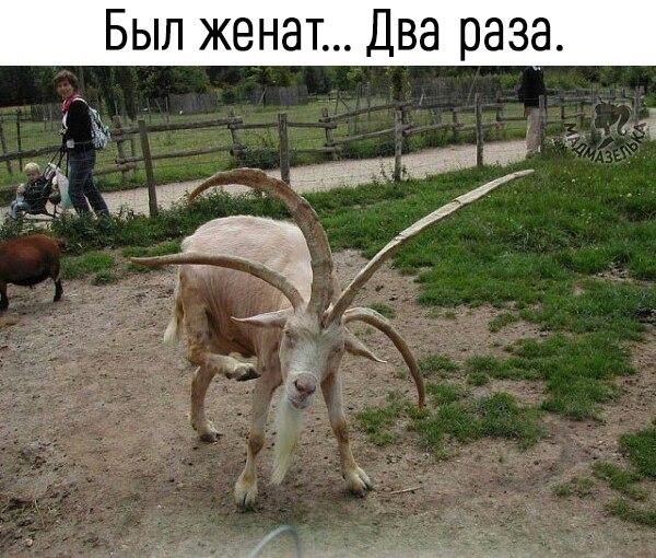 http://s3.uploads.ru/WkpEh.jpg