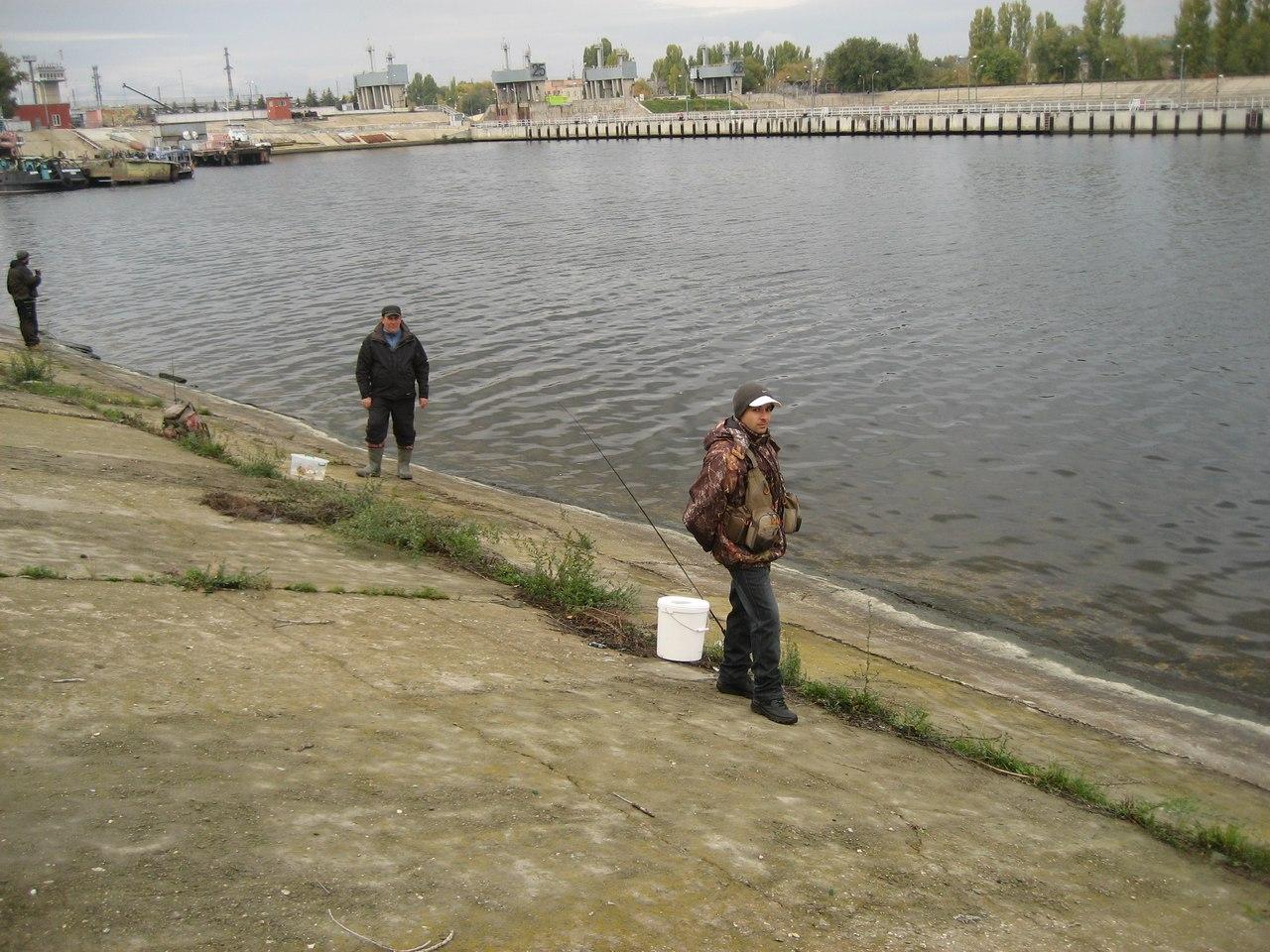 http://s3.uploads.ru/Wy2Vw.jpg