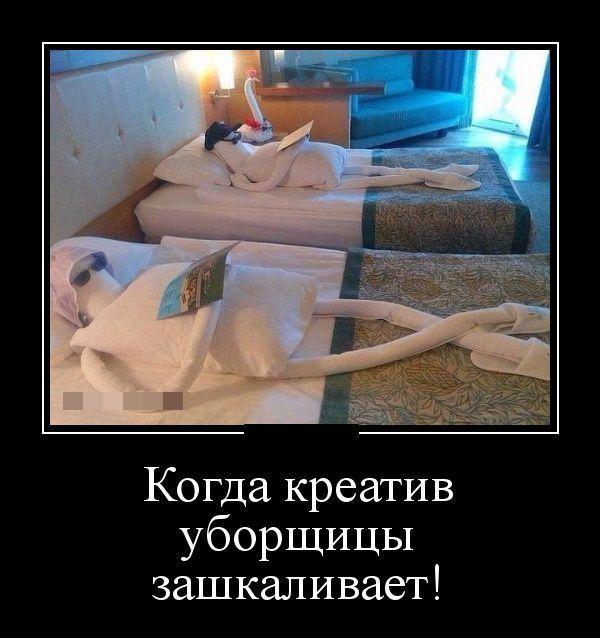 http://s3.uploads.ru/Y6ARh.jpg