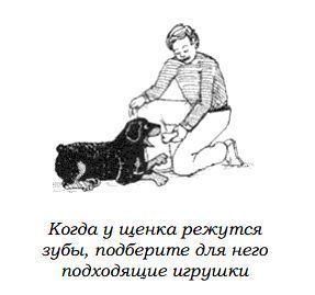 http://s3.uploads.ru/Y6I43.jpg