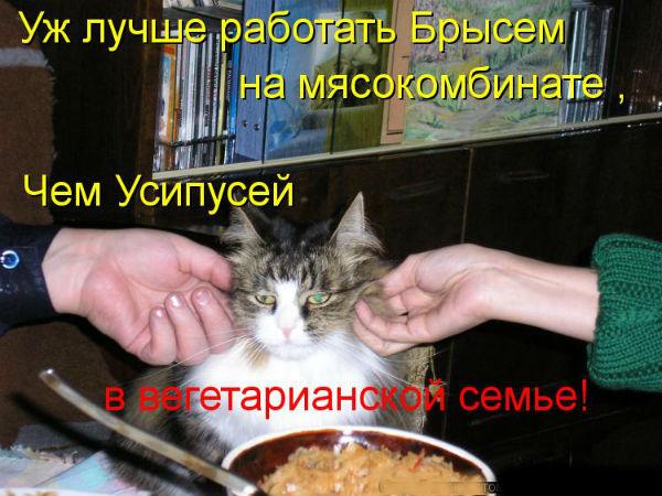 http://s3.uploads.ru/Z0HU8.jpg