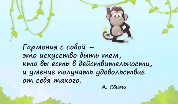 http://s3.uploads.ru/bDJ94.jpg