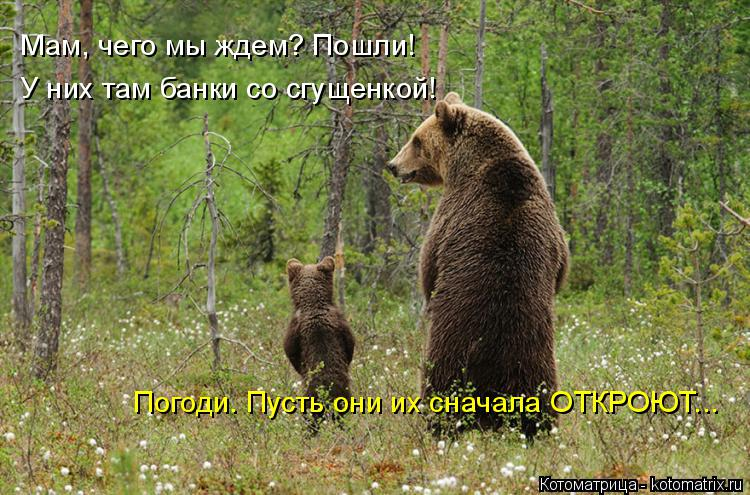 http://s3.uploads.ru/bRc7Y.jpg