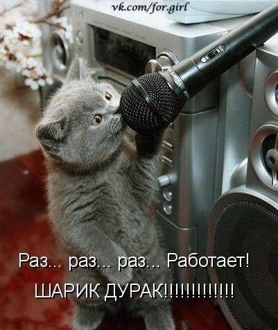 http://s3.uploads.ru/biuI2.jpg