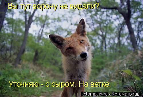http://s3.uploads.ru/bmi8w.jpg