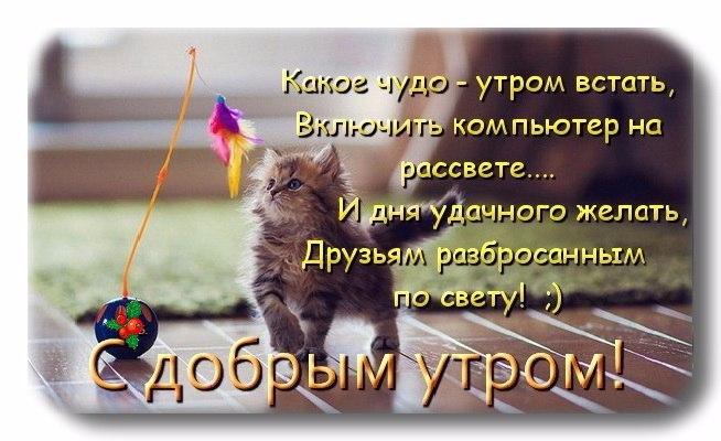 http://s3.uploads.ru/cL2d1.jpg
