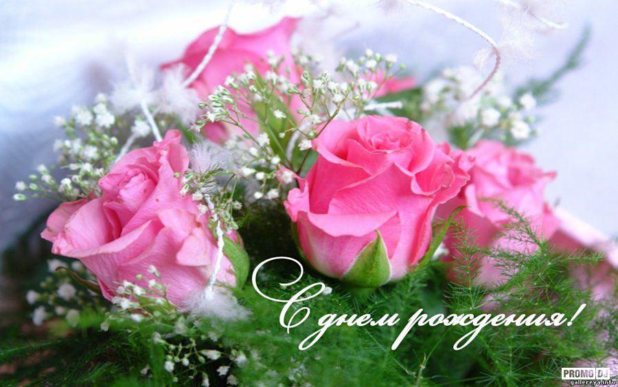 http://s3.uploads.ru/cVjJH.jpg