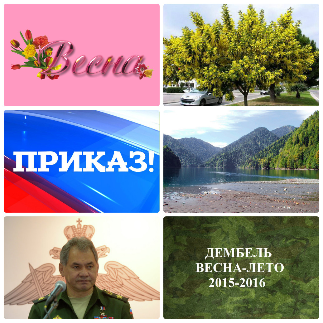 http://s3.uploads.ru/cinPA.jpg
