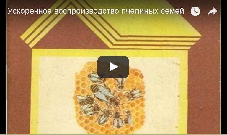 http://s3.uploads.ru/d/6c1u2.jpg