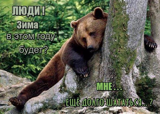 http://s3.uploads.ru/dFpAX.jpg