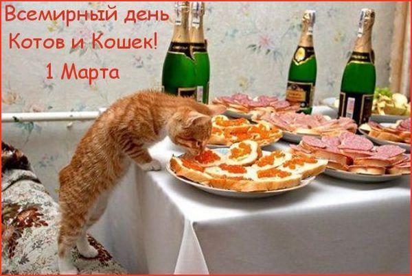 http://s3.uploads.ru/dI1gS.jpg
