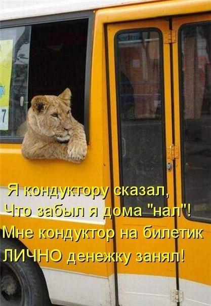 http://s3.uploads.ru/dRbkF.jpg