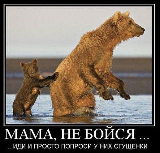 http://s3.uploads.ru/dy6cr.jpg