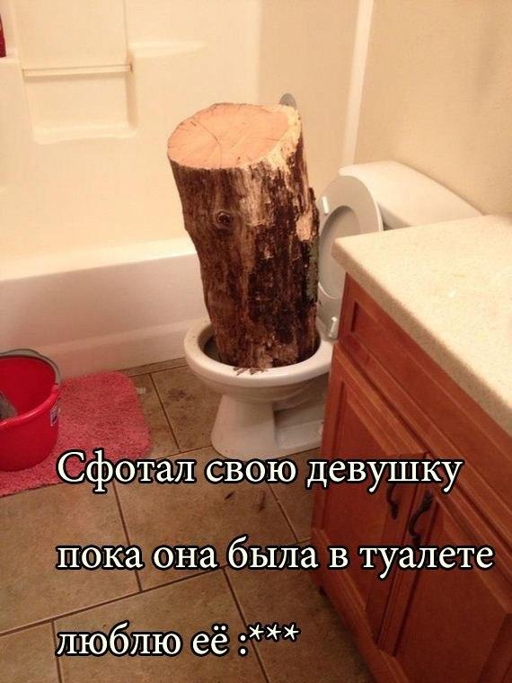 http://s3.uploads.ru/eckXh.jpg