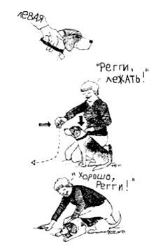 http://s3.uploads.ru/edzwv.jpg