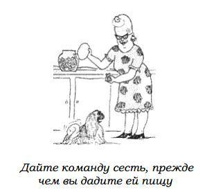 http://s3.uploads.ru/eqlNx.jpg