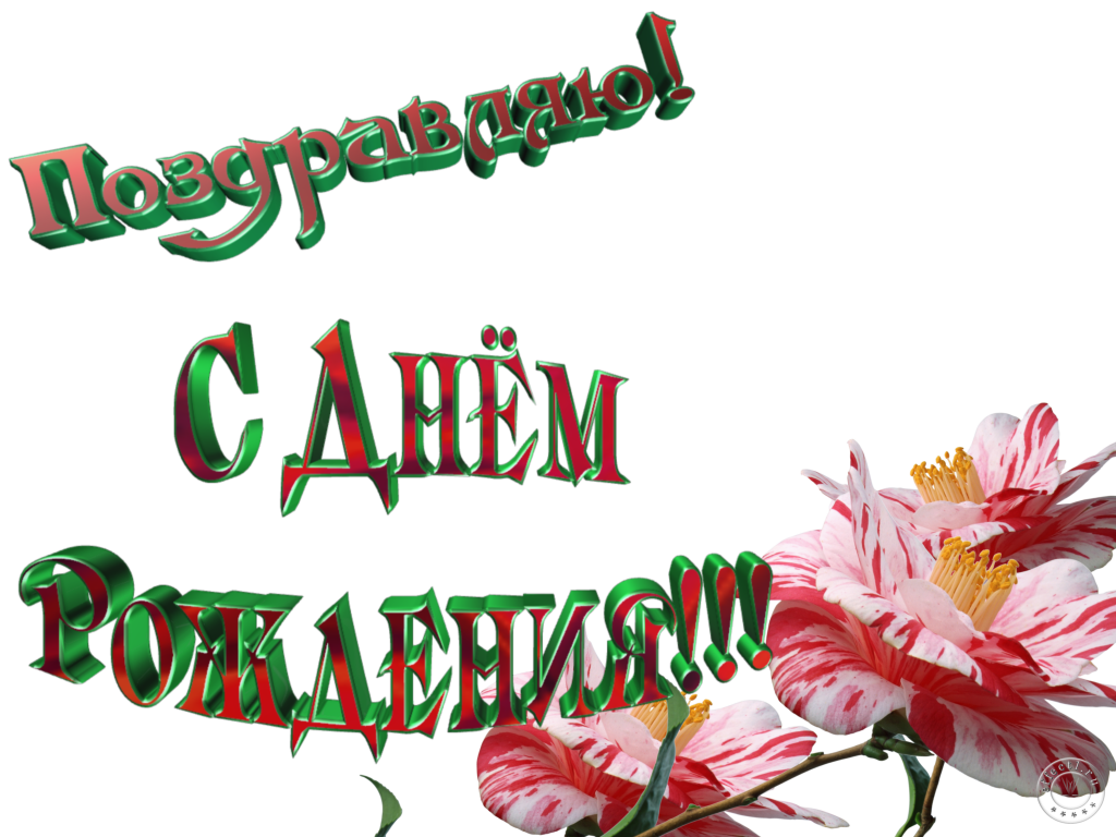 http://s3.uploads.ru/eyMwf.png