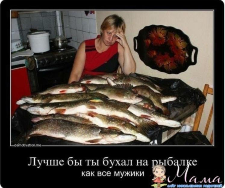http://s3.uploads.ru/gC6YR.jpg