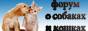 Форум о собаках и кошках