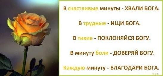 http://s3.uploads.ru/gcwi7.jpg