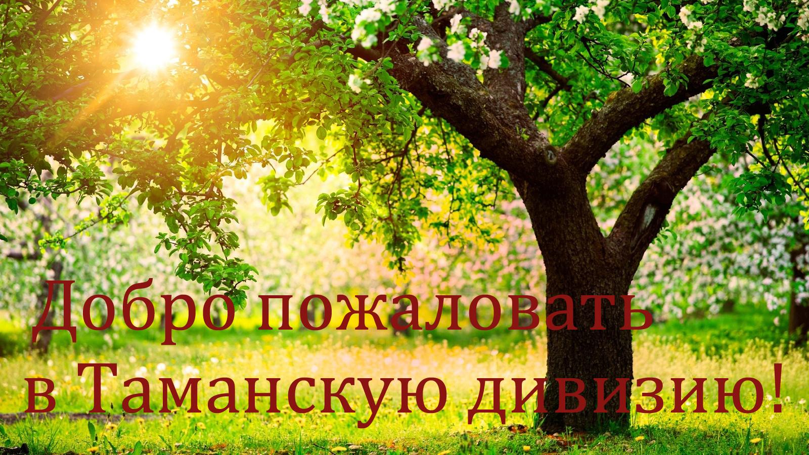 http://s3.uploads.ru/gjPlO.jpg