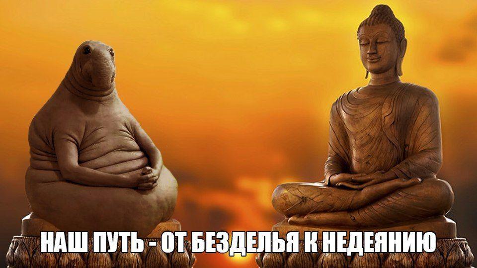 http://s3.uploads.ru/glcY1.jpg