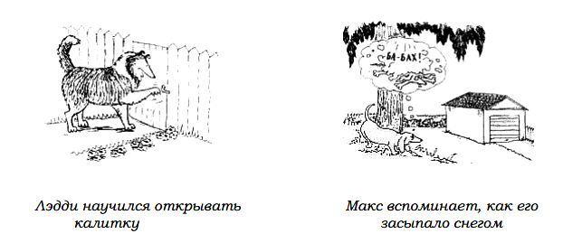 http://s3.uploads.ru/huTNK.jpg