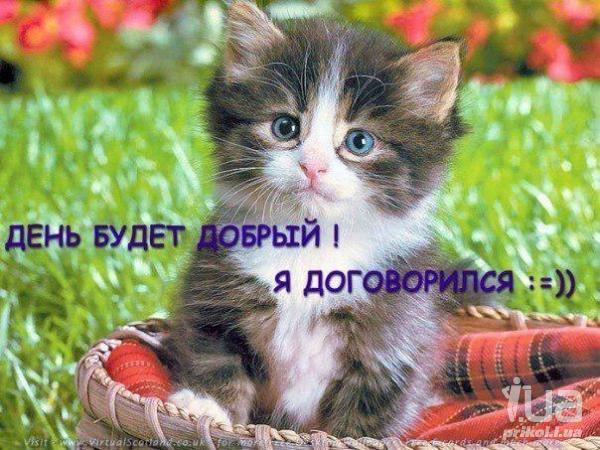 http://s3.uploads.ru/i/g6RsO.jpg