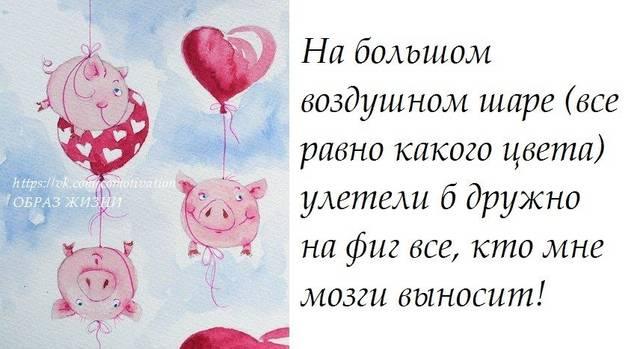 http://s3.uploads.ru/jcIkH.jpg