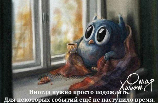 http://s3.uploads.ru/l7IGd.jpg