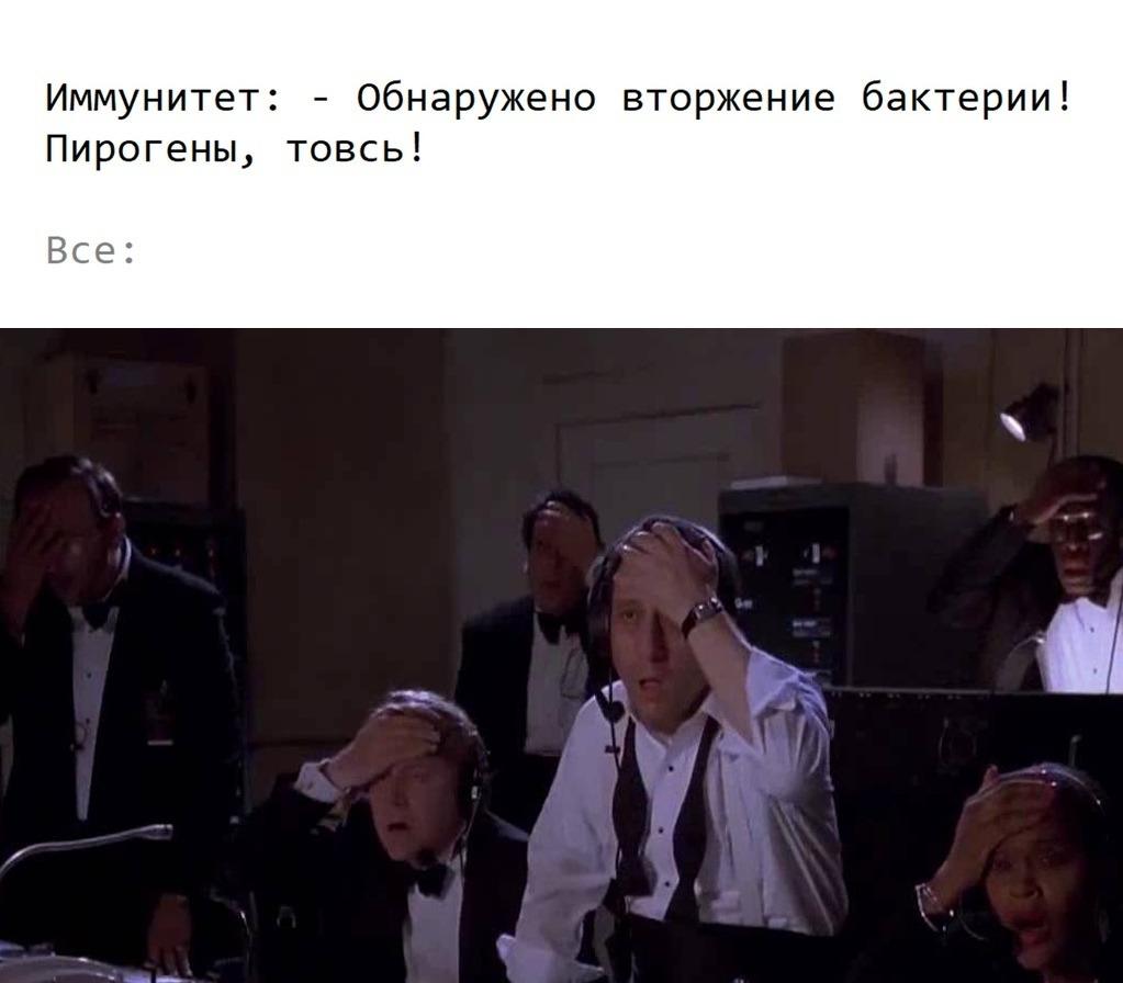 http://s3.uploads.ru/lEivS.jpg
