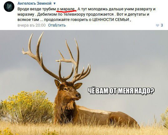 http://s3.uploads.ru/lYrv4.jpg