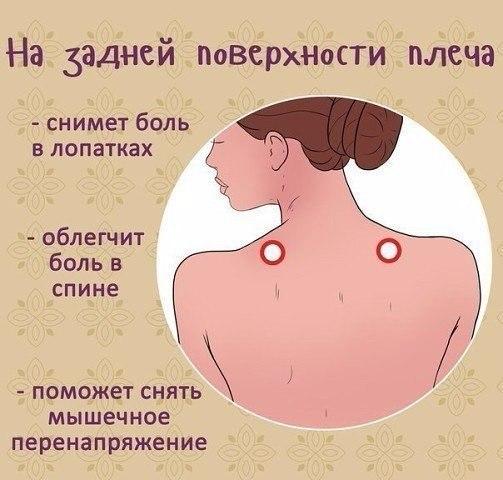 http://s3.uploads.ru/mBr6s.jpg