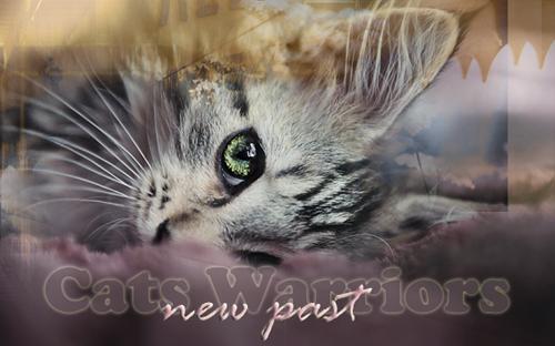 cw: новое прошлое