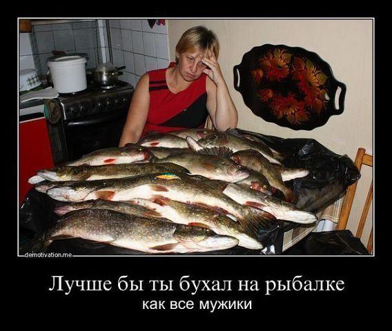 http://s3.uploads.ru/nb9iJ.jpg