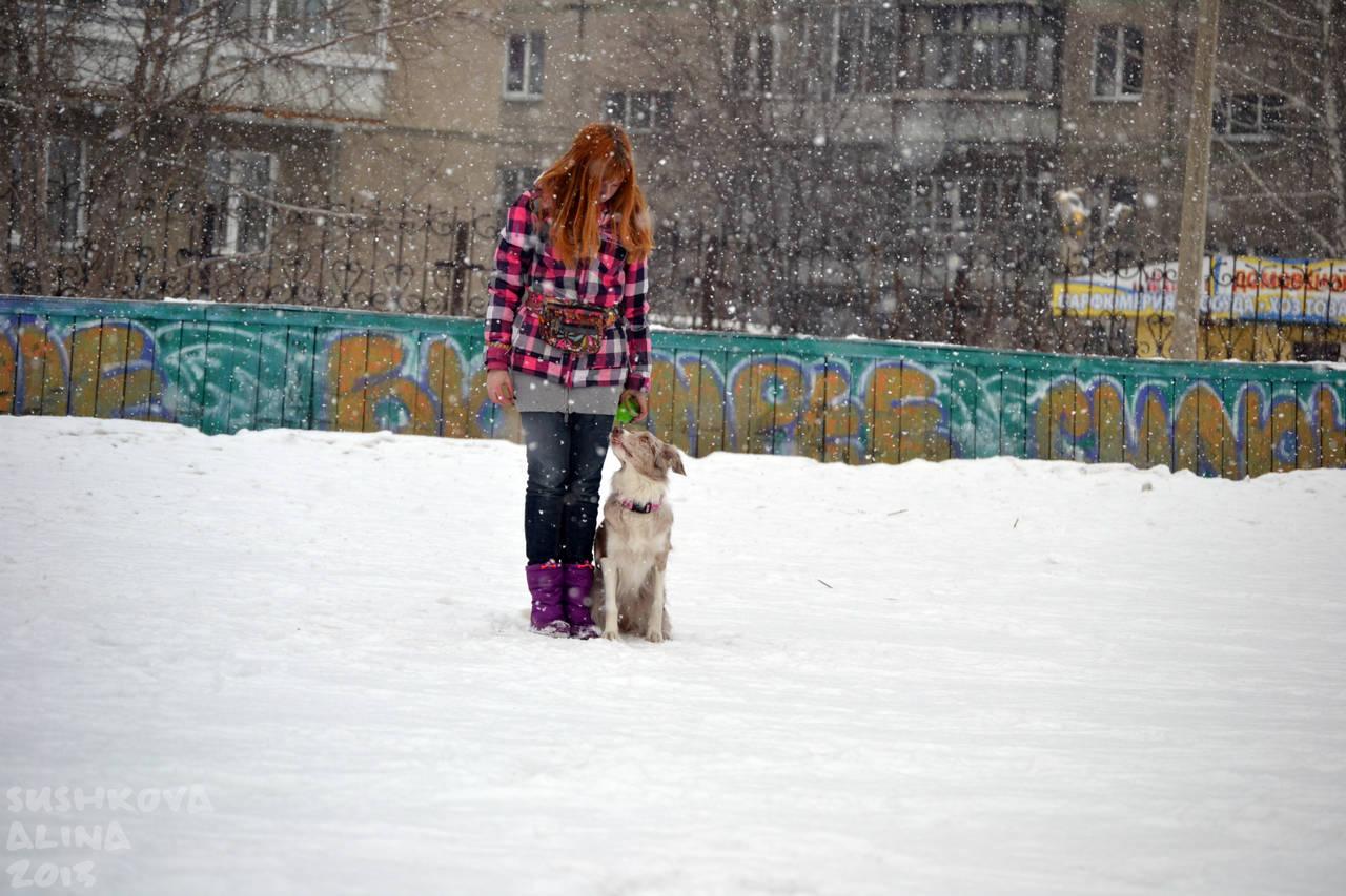 http://s3.uploads.ru/oJ1TG.jpg