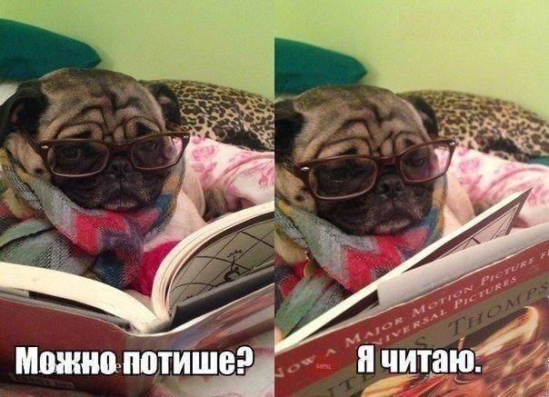 http://s3.uploads.ru/oOAFh.jpg