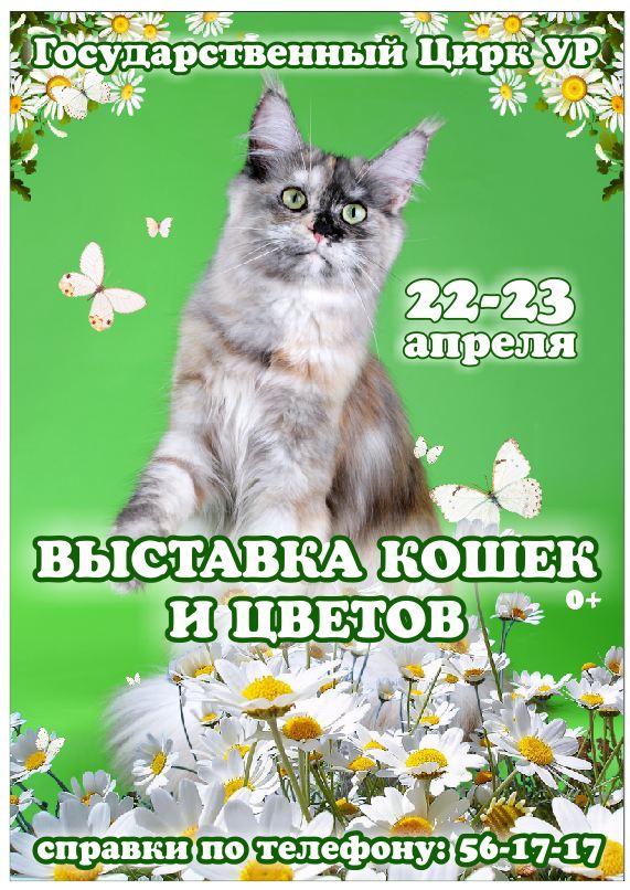 http://s3.uploads.ru/pSm93.jpg