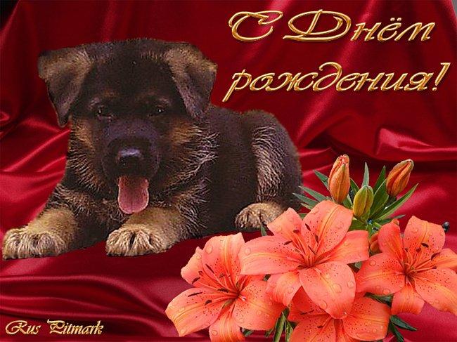 http://s3.uploads.ru/pX3yN.jpg