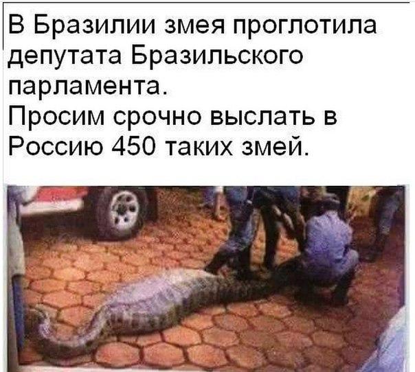 http://s3.uploads.ru/q4SXk.jpg