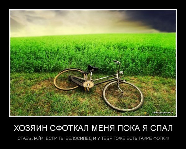 http://s3.uploads.ru/qOpj6.jpg