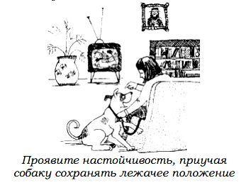 http://s3.uploads.ru/r1gma.jpg