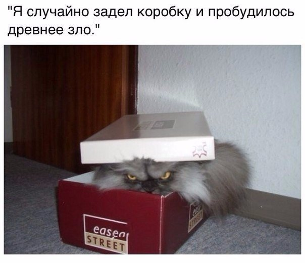 http://s3.uploads.ru/rPR27.jpg