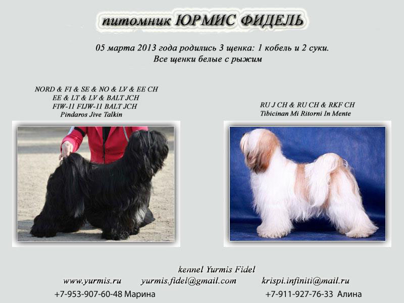 http://s3.uploads.ru/rksqY.jpg