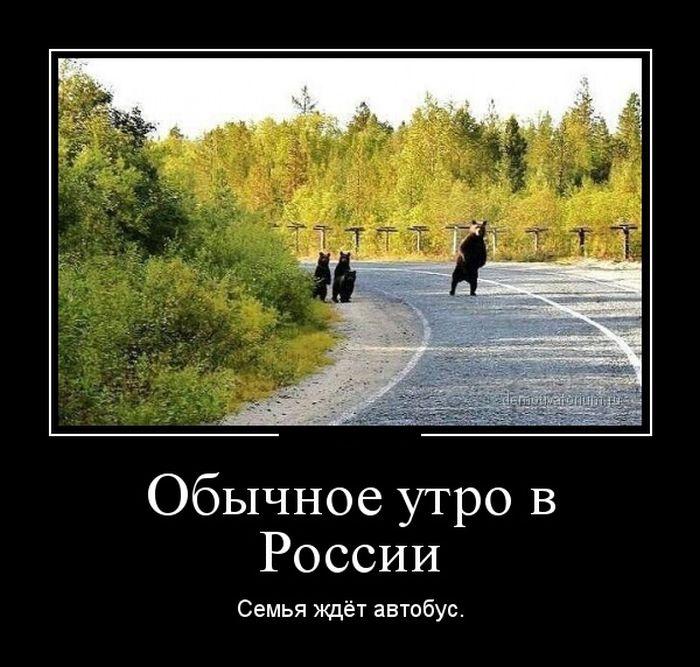 http://s3.uploads.ru/rkw5C.jpg