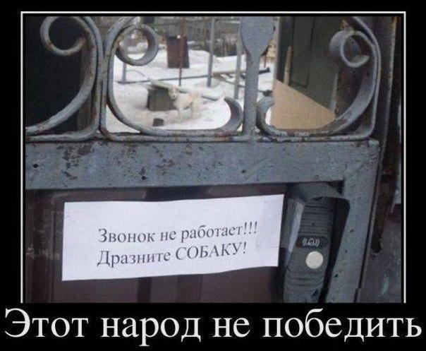 http://s3.uploads.ru/saiQf.jpg