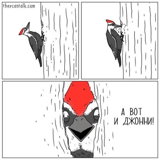 http://s3.uploads.ru/sjFJ1.jpg