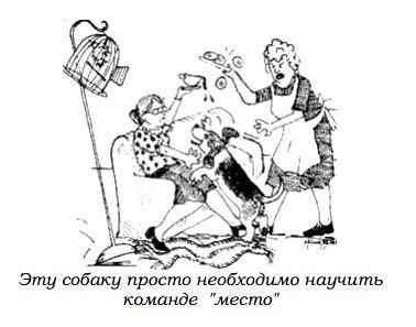 http://s3.uploads.ru/steF9.jpg