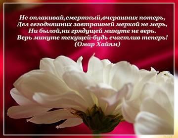 http://s3.uploads.ru/t/006TE.jpg