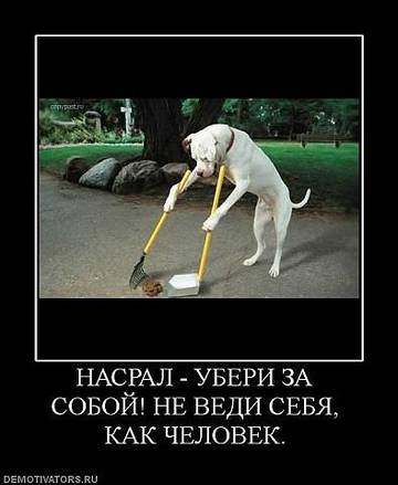 http://s3.uploads.ru/t/08dTr.jpg